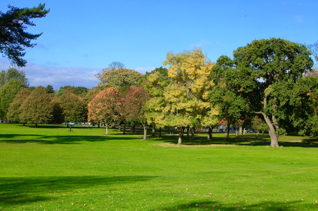 Changing autumn colours in Whisby Park Cleethorpes Grimsby North East Lincolnshire